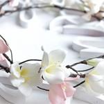Ободок цветы Яблони