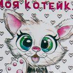 Женская открытка Cat