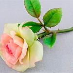 Брошь цветы Роза