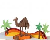 Открытка Верблюд